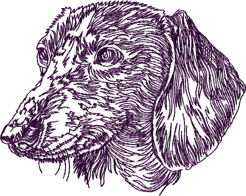 Dachshund Designs