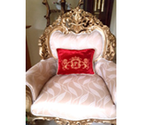 Family Crest Pillow with Lion and Medieval Frames