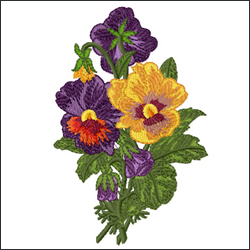 Romantic Pansies Bouquet 3