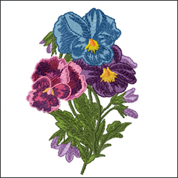 Romantic Pansies Bouquet 4